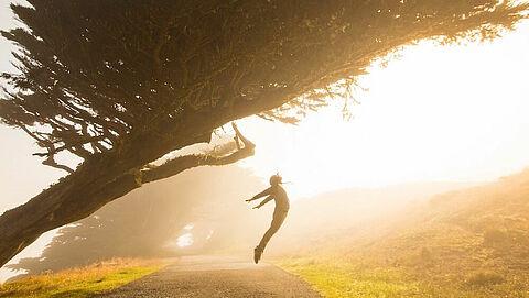 Jump unterm Baum