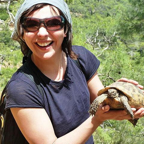 Wilde Schildkröten