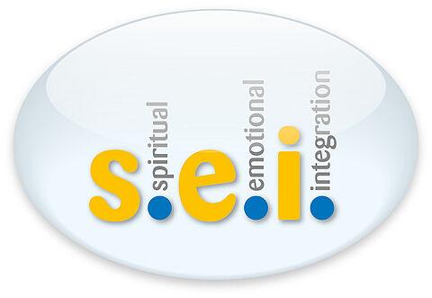 Logo s.e.i. rund